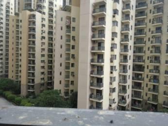 1629 sqft, 3 bhk Apartment in Unitech Fresco Sector 50, Gurgaon at Rs. 34000