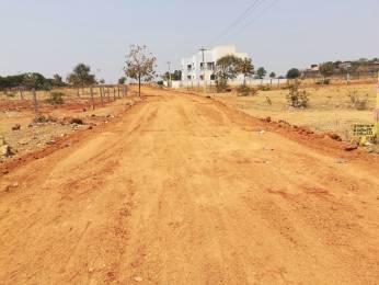 1323 sqft, Plot in Building True Gold 1 Phase 2 Shadnagar, Hyderabad at Rs. 5.5000 Lacs