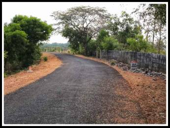 4350 sqft, Plot in Builder Project Mailam, Villupuram at Rs. 30.0000 Lacs