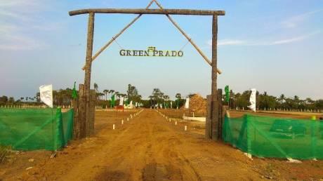 10000 sqft, Plot in Builder green prado Kalpakkam, Chennai at Rs. 14.0000 Lacs