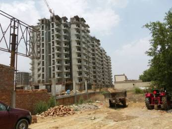 469 sqft, 1 bhk Apartment in Pivotal Paradise Sector 62, Gurgaon at Rs. 19.0000 Lacs