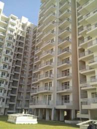 400 sqft, 1 bhk Apartment in Builder Project MG Road, Gurgaon at Rs. 20.0000 Lacs