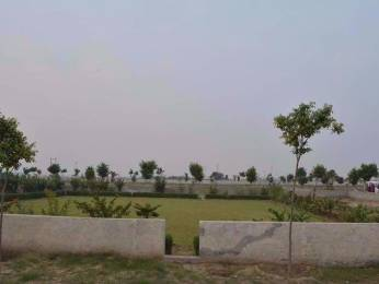 540 sqft, Plot in Builder bkr green city Knowledge Park V, Greater Noida at Rs. 1.9500 Lacs