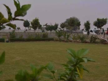 459 sqft, Plot in Builder bkr green city sales manager geeta yadav Yamaha Vihar Colony, Noida at Rs. 1.7500 Lacs