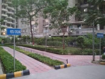 1000 sqft, 2 bhk Apartment in AWHO Sispal Vihar Sector 49, Gurgaon at Rs. 23000