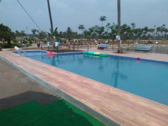 1800 sqft, Plot in Bhoomatha Amaravati Green City Modavalasa, Visakhapatnam at Rs. 13.0000 Lacs