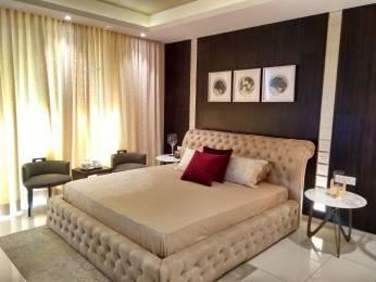 1906 sqft, 3 bhk Apartment in Maya Green Lotus Saksham Patiala Highway, Zirakpur at Rs. 66.0000 Lacs