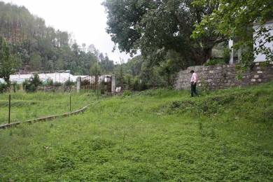 1980 sqft, Plot in Builder Project Bhowali, Nainital at Rs. 12.0000 Lacs