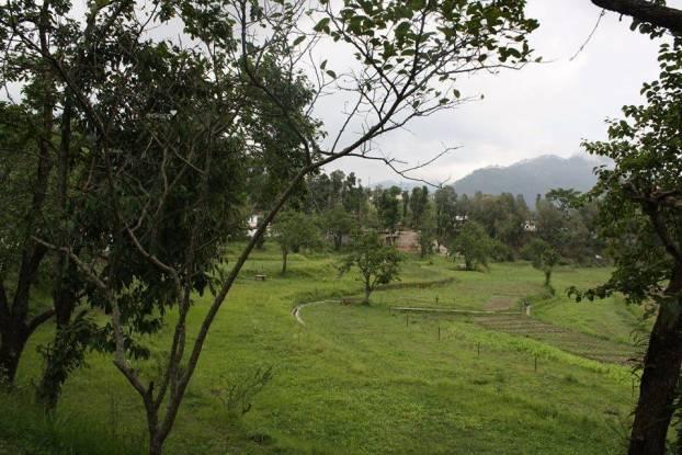 1980 sqft, Plot in Builder Project Bhowali, Nainital at Rs. 12.0000 Lacs