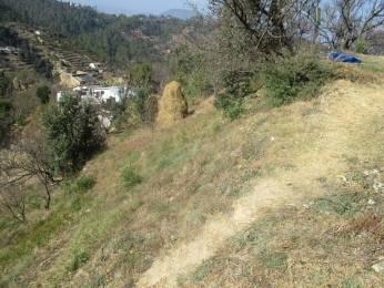 13500 sqft, Plot in Builder Project Mukteshwar, Nainital at Rs. 45.0000 Lacs