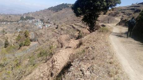 9000 sqft, Plot in Builder Project Sitla - Mukteswar, Nainital at Rs. 35.0000 Lacs