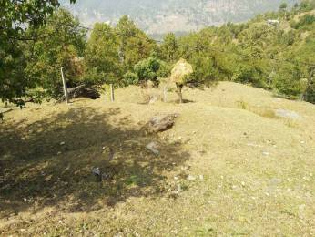 12600 sqft, Plot in Builder Project Jhandi Dhar Binsar Sanctuary Gate Road, Almora at Rs. 70.0000 Lacs