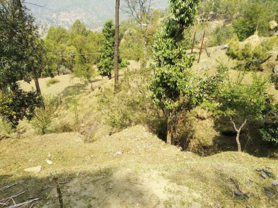 1800 sqft, Plot in Builder Project Bhowali, Nainital at Rs. 7.0000 Lacs