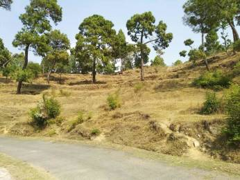 2100 sqft, Plot in Builder Project Nainital Road, Nainital at Rs. 7.0000 Lacs