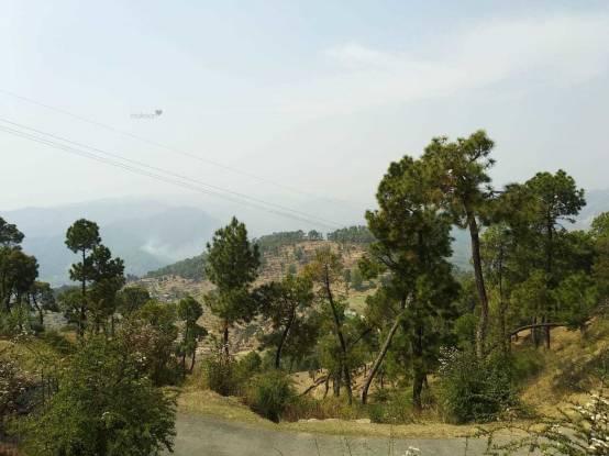 900 sqft, Plot in Builder Project Bhimtal, Nainital at Rs. 3.5000 Lacs