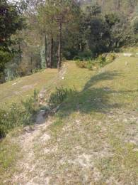 900 sqft, Plot in Builder Project Pangot, Nainital at Rs. 3.5000 Lacs