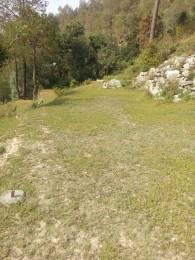 1800 sqft, Plot in Builder Project Pangot, Nainital at Rs. 7.0000 Lacs