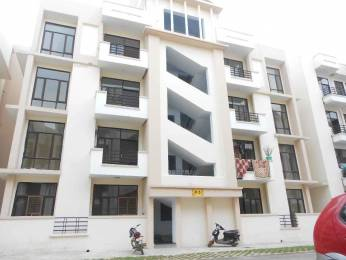 1620 sqft, 3 bhk BuilderFloor in Builder SRS Pearl floor sector 87 Sector 87, Faridabad at Rs. 30.0000 Lacs