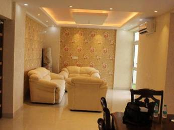 1325 sqft, 2 bhk BuilderFloor in Emerald Heights Sector 88, Faridabad at Rs. 41.0000 Lacs