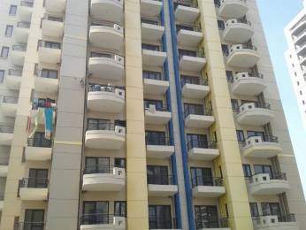 1273 sqft, 2 bhk Apartment in RPS Savana Sector 88, Faridabad at Rs. 45.0000 Lacs