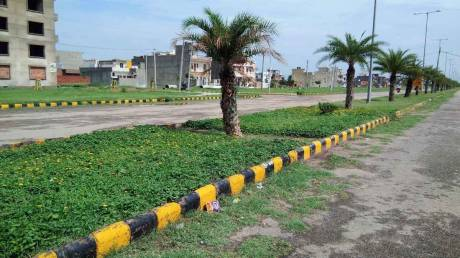 1800 sqft, Plot in Builder Project Sunny Enclave, Chandigarh at Rs. 55.0000 Lacs