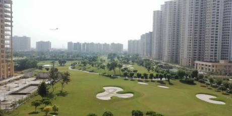 2440 sqft, 3 bhk Apartment in Jaypee The Kalypso Court Sector 128, Noida at Rs. 1.7000 Cr