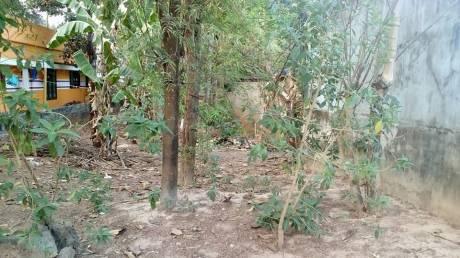 3700 sqft, Plot in Builder Plot for Sale Neyyattinkara, Trivandrum at Rs. 42.0000 Lacs
