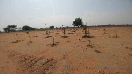 9000 sqft, Plot in Builder Project Timmapur, Hyderabad at Rs. 30.0000 Lacs