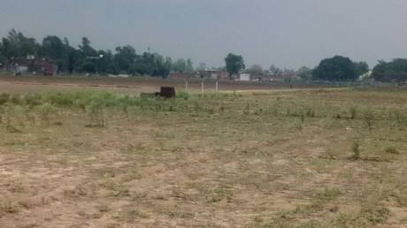 1500 sqft, Plot in Builder Project raibareli road nigohan, Lucknow at Rs. 8.7500 Lacs