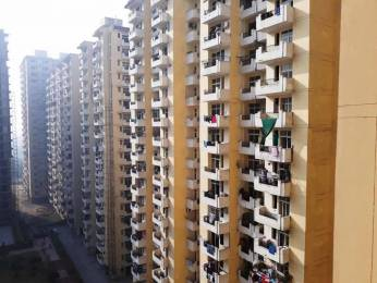 600 sqft, 1 bhk Apartment in Avj Heightss Zeta, Greater Noida at Rs. 6000