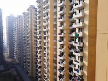 600 sqft, 1 bhk Apartment in Avj Heightss Zeta, Greater Noida at Rs. 5500