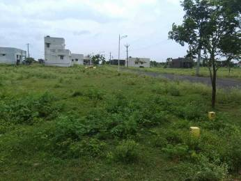 2080 sqft, Plot in Builder Project Othakalmandapam, Coimbatore at Rs. 13.1040 Lacs