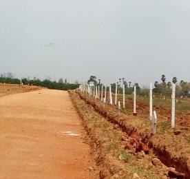 1503 sqft, Plot in Builder nandanavanamsubhapradha Tagarapuvalasa, Visakhapatnam at Rs. 19.2050 Lacs
