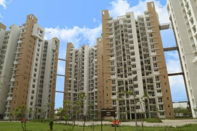 1350 sqft, 3 bhk Apartment in Logix Blossom Greens Sector 143, Noida at Rs. 60.9700 Lacs