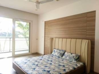 580 sqft, 1 bhk Apartment in Builder Project Sahastradhara Road, Dehradun at Rs. 23.0000 Lacs