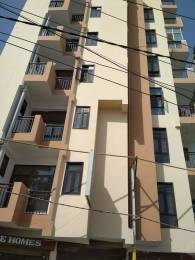 600 sqft, 1 bhk Apartment in Builder Paradise Home Noida Extn, Noida at Rs. 13.0000 Lacs