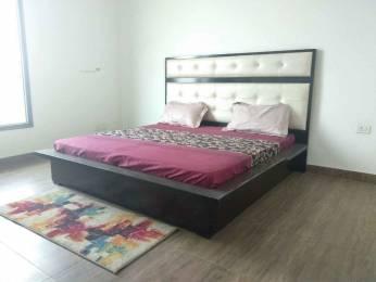 1650 sqft, 3 bhk Apartment in Builder gaur city 12th avenue Noida Extn, Noida at Rs. 9000