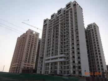 1440 sqft, 3 bhk Apartment in Arihant Ambar Sector 1 Noida Extension, Greater Noida at Rs. 48.0000 Lacs