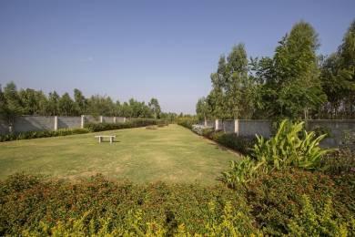 10800 sqft, Plot in Builder Shiva Gardens Enclave Neeladri Nagar, Bangalore at Rs. 19.1900 Lacs
