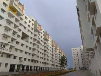 770 sqft, 2 bhk Apartment in Sipani Bliss Chandapura, Bangalore at Rs. 12000