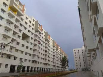 770 sqft, 2 bhk Apartment in Sipani Bliss Chandapura, Bangalore at Rs. 12000