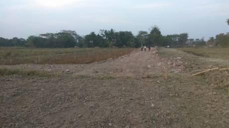 720 sqft, Plot in Builder Southern Valley Behala, Kolkata at Rs. 1.1000 Lacs