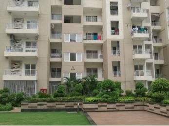 1277 sqft, 3 bhk Apartment in Ajnara Daffodil Sector 137, Noida at Rs. 14000