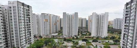1260 sqft, 2 bhk Apartment in Builder Naav Nirman Multi State CGHS L Zone Dwarka Phase 2 Delhi, Delhi at Rs. 42.0000 Lacs