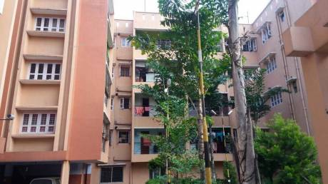 1600 sqft, 3 bhk Apartment in Builder Project Sevoke Road, Siliguri at Rs. 16000
