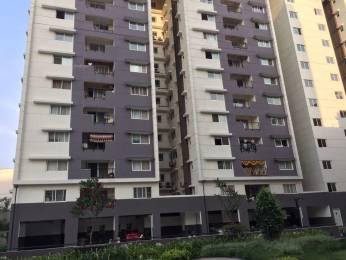1280 sqft, 2 bhk Apartment in Salarpuria Sattva Necklace Pride Kavadiguda, Hyderabad at Rs. 26000