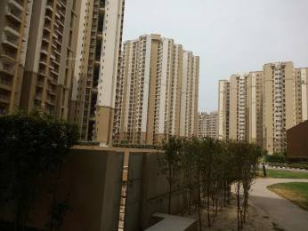825 sqft, 2 bhk Apartment in Paras Tierea Sector 137, Noida at Rs. 35.0000 Lacs