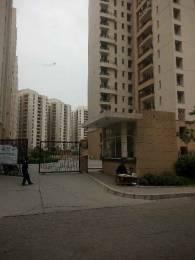 1310 sqft, 3 bhk Apartment in Jaypee Kosmos Sector 134, Noida at Rs. 11000
