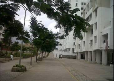 560 sqft, 1 bhk Apartment in Magnus Simpli City Handewadi, Pune at Rs. 30.0000 Lacs