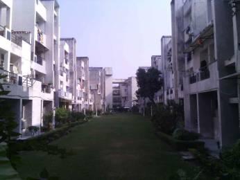 1300 sqft, 2 bhk Apartment in Builder SRI NATH JI VIHAR Nirala Nagar, Lucknow at Rs. 50.0000 Lacs